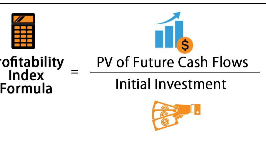What is Profitability Index How to Calculate it (definition, formula, excel formula)