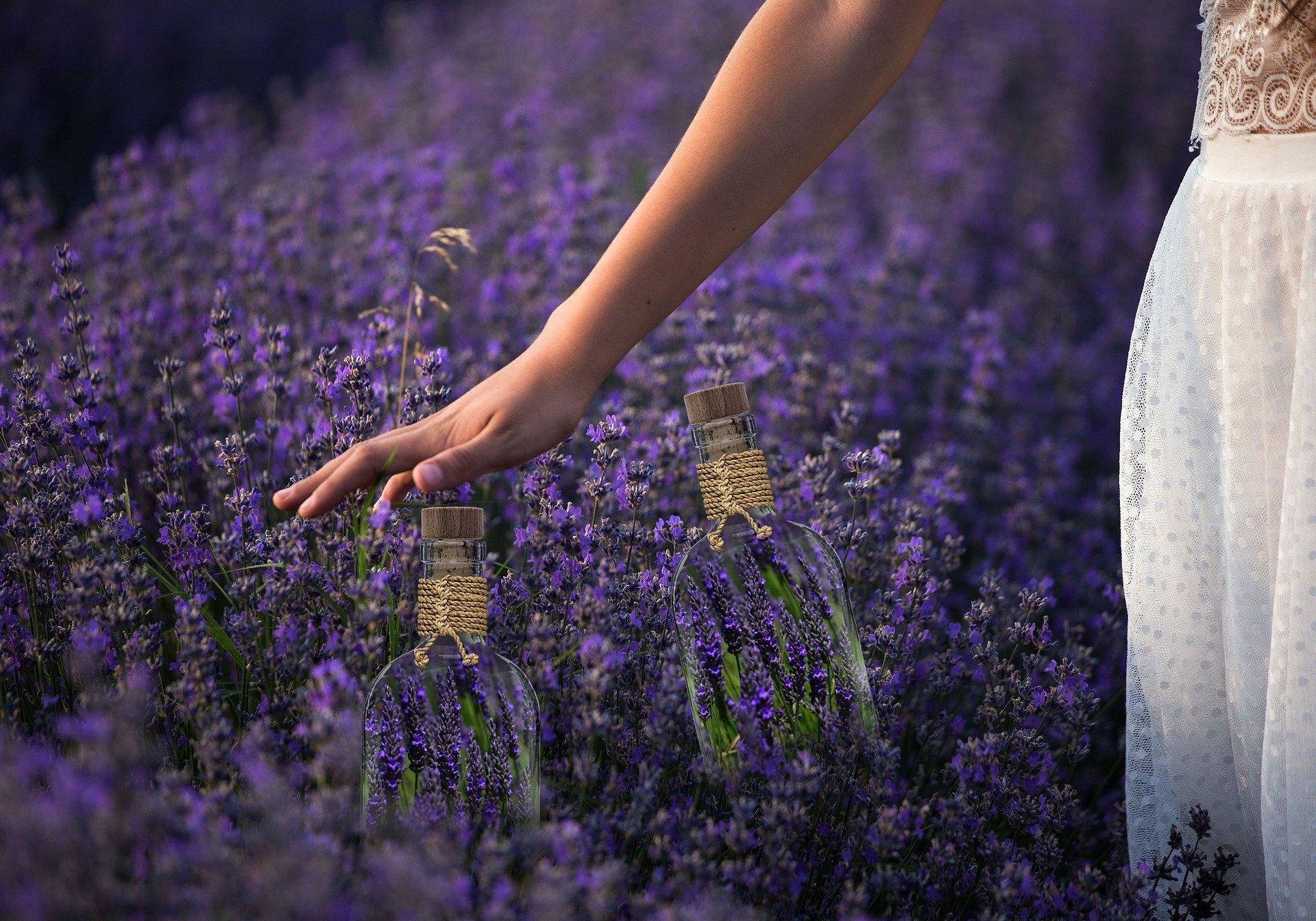 Luxury Perfumes for Women Online