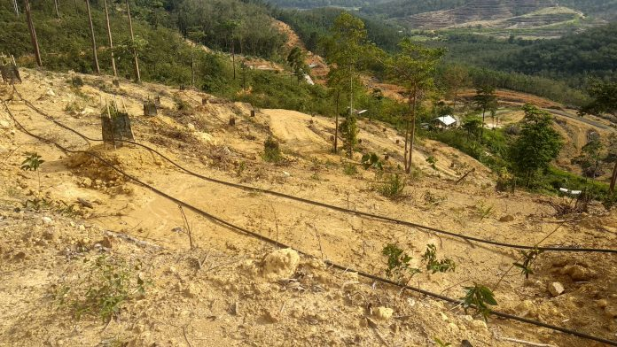 The Valley @ Bentong Farming Lot for Sale