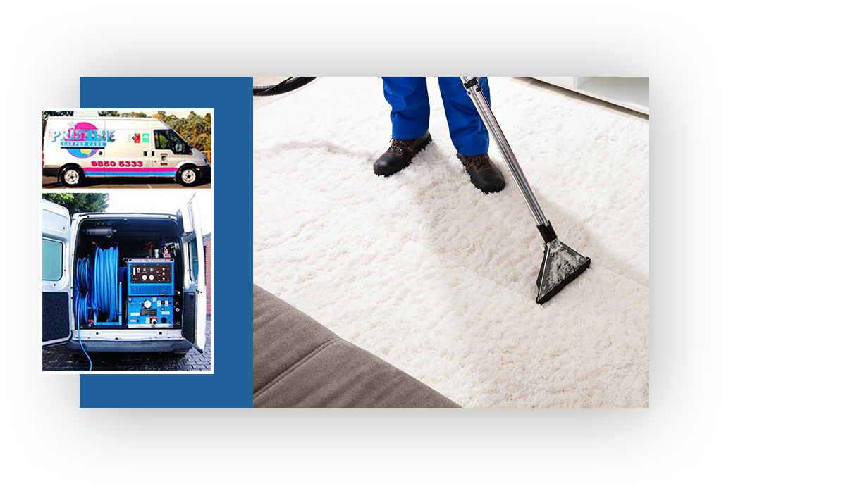 Quality and Reliable Carpet Cleaning in Templestowe