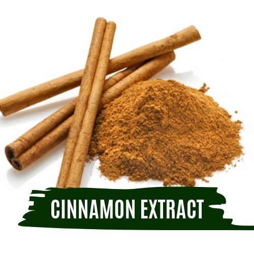 Cure Major Health Disorders with Cinnamon Extract