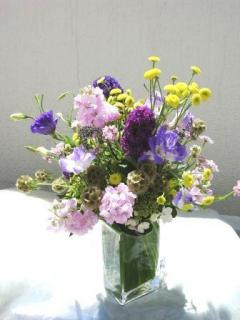 Best Florist In Berkeley CA | Beautiful Blooms For Your Special Occasion