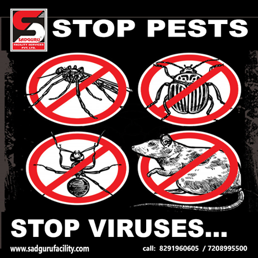 Pest Control Services in Thane - Sadguru Pest Control