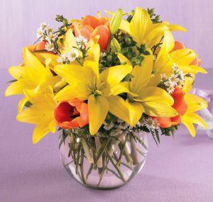 Best Florist Charlottesville VA   The Flower Shop