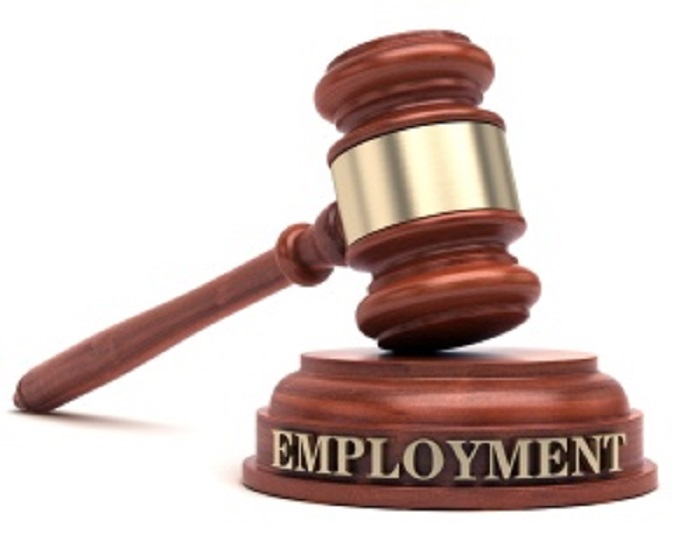 Understanding Employment Contract Provisions