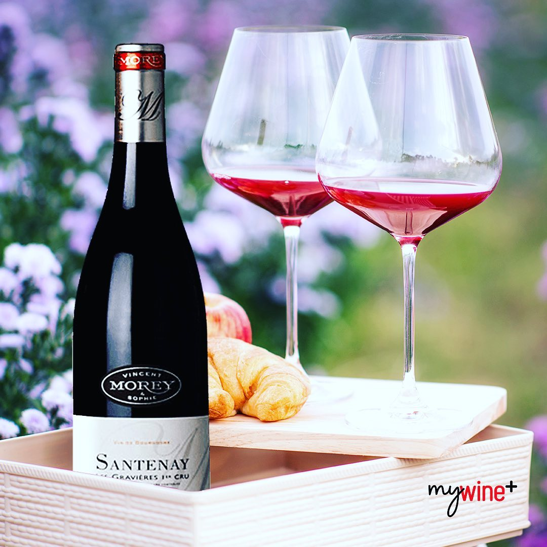 Shop Best Red Zinfandel Wine To Drink