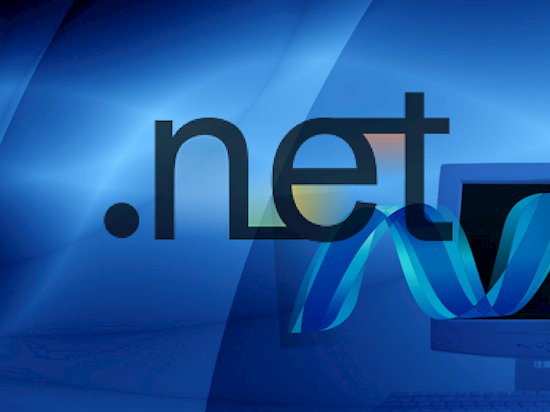 We Provide Custom .NET Development Services at Low rates
