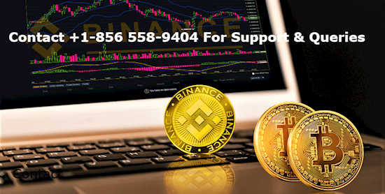 Binance Support number +1(856) 558-9404