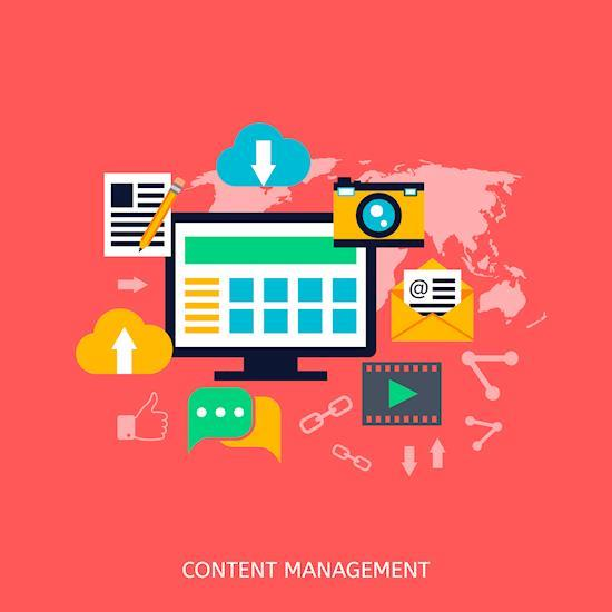 Powerful & User-friendly Website using WordPress CMS Platform