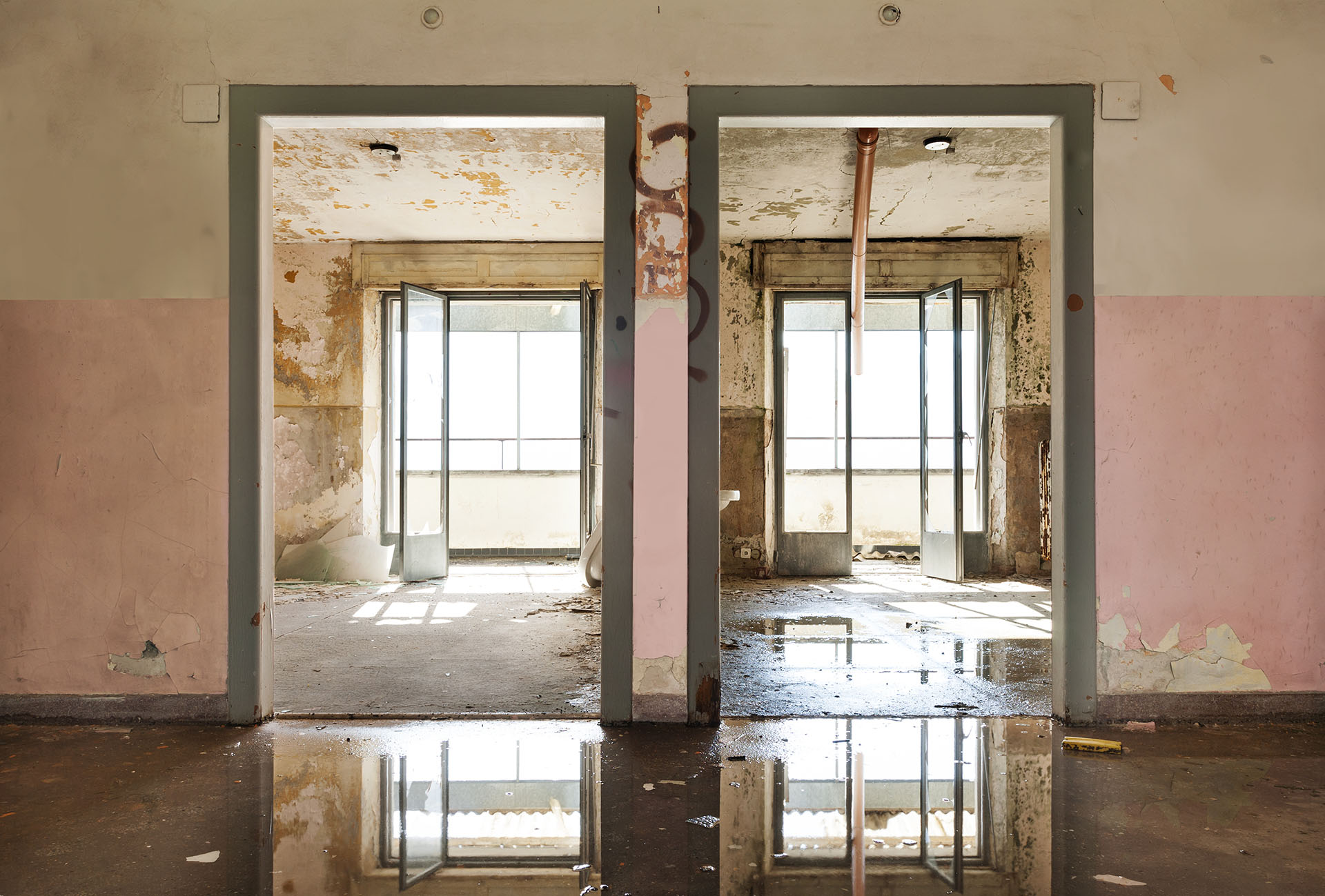 Mold Removal in Fort Lauderdale   Free Leak & Mold Inspection