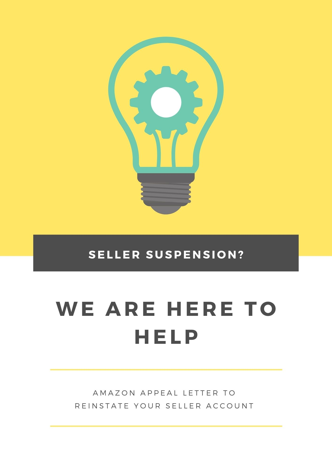 Plan of Action For Amazon Appeal Letter
