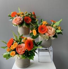Experienced Baltimore Florist