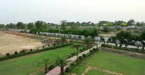 Buy Farmhouse in Delhi