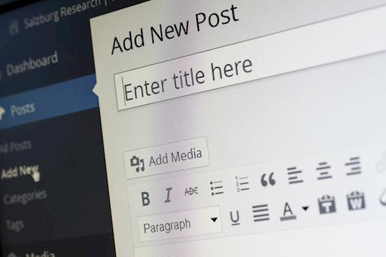 Stunning website development using WordPress CMS. Reach us