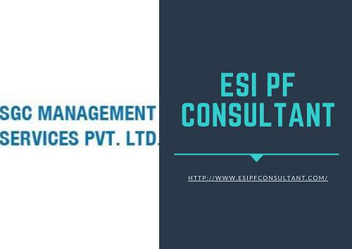 PF ESI Consultant - Provident Fund consultant in Delhi NCR