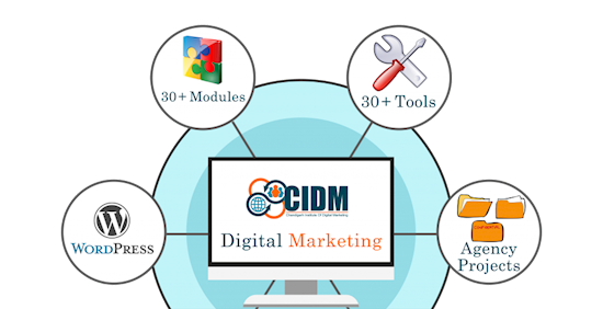Learn Digital Marketing Course through Experts- CIDM