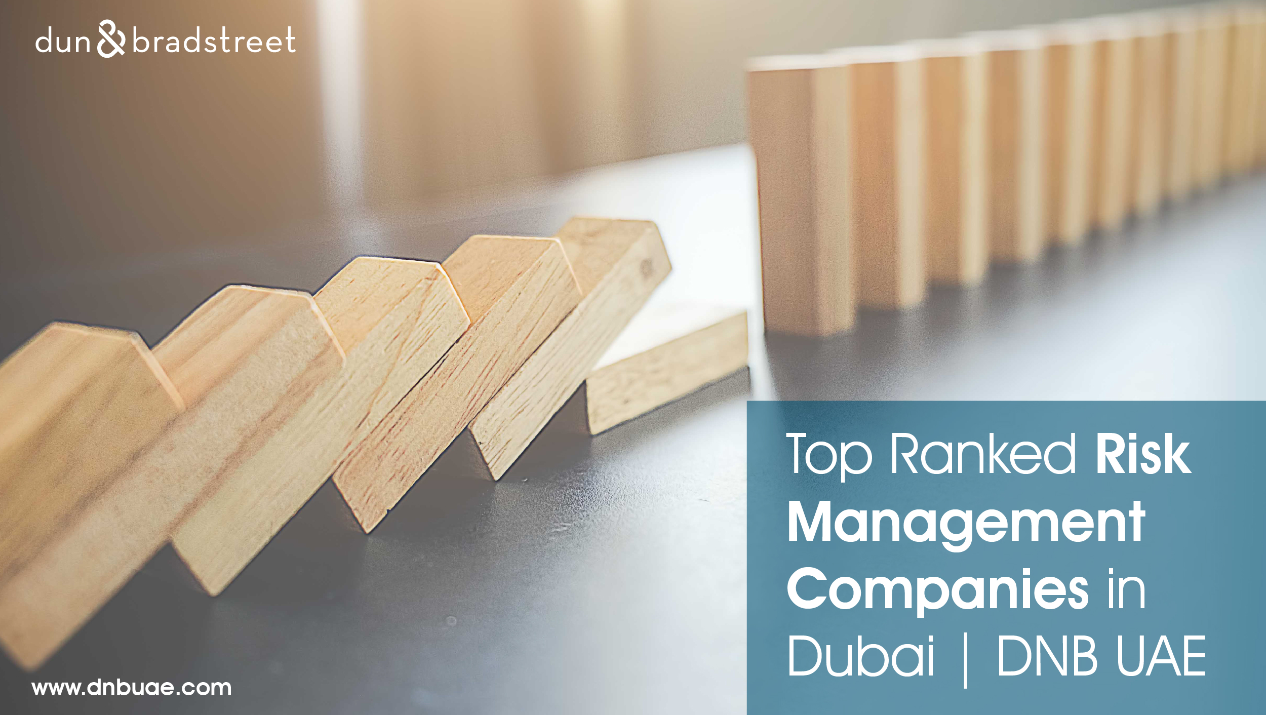 Most Trusted Risk Management Companies Dubai | UAE