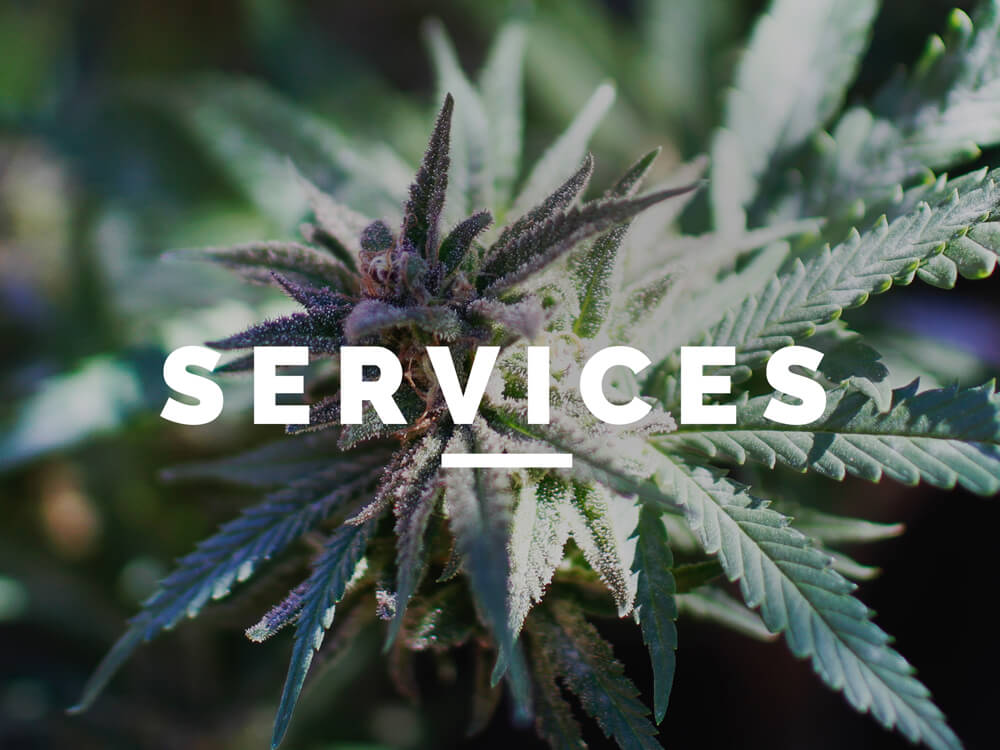 Cannabis Tax Planning