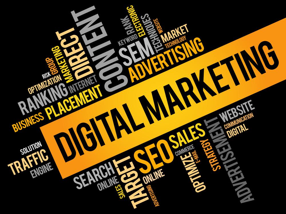 Professional Digital Marketing Services New York