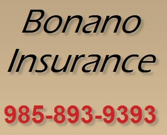 Best House Insurance Agents in Louisiana