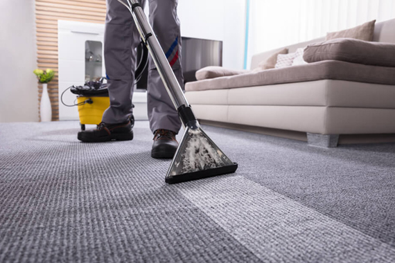 Best Carpet Steam Cleaning Services in Brighton