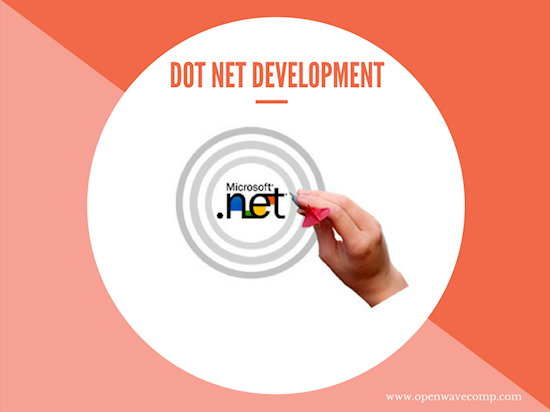 Hire expert .NET developers at low rates in the USA