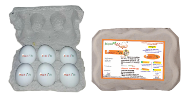 Buy Fresh Eggs Online in Jaipur
