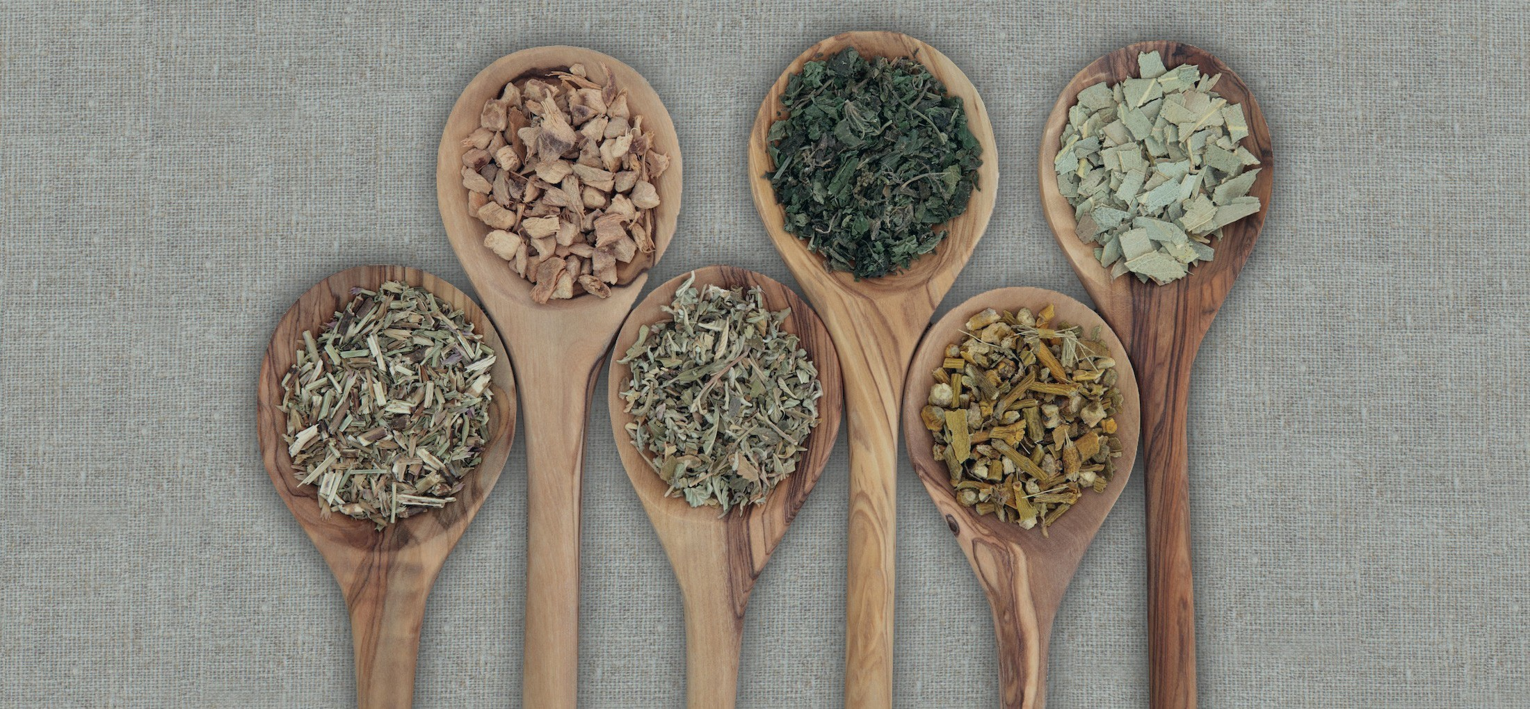 Naturopathic Doctor Near Me | Balance Complementary Medicine