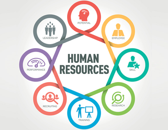 Looking for HR software In India?