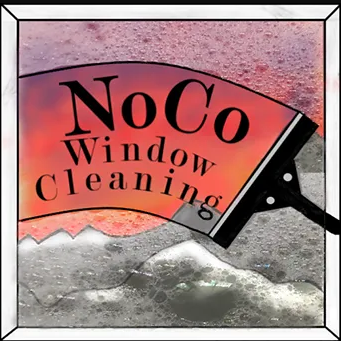 professional gutter cleaning company in colorado