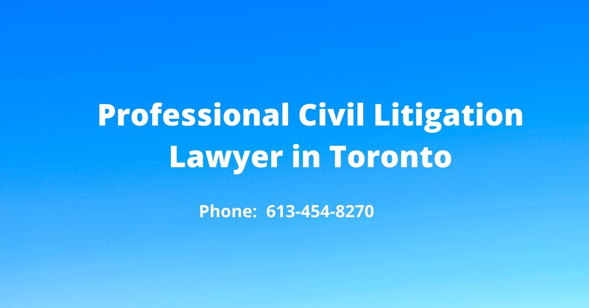 Professional Civil Litigation Lawyer in Toronto