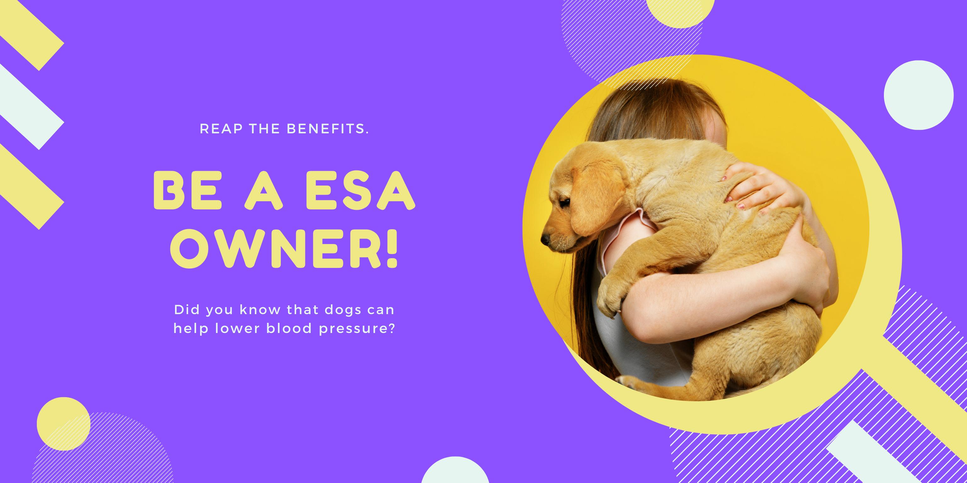 Get Emotional Support Animal  letter Online.
