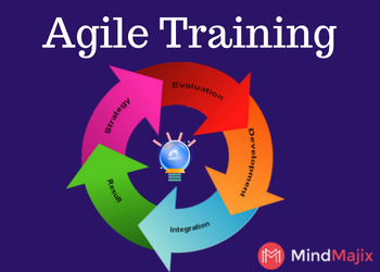 Agile Training & Certification Course 2019 By Experts in Virginia