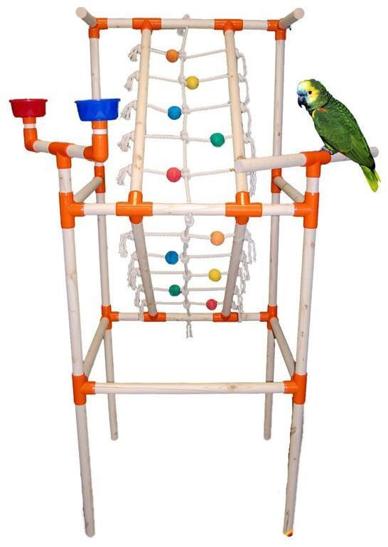 High Quality Bird Supplies in Dubai - Happyfish Pet Store