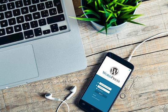 We specialize in building powerful WordPress websites