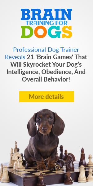 Hi dog lover, No matter what your dog's problem behavior is…