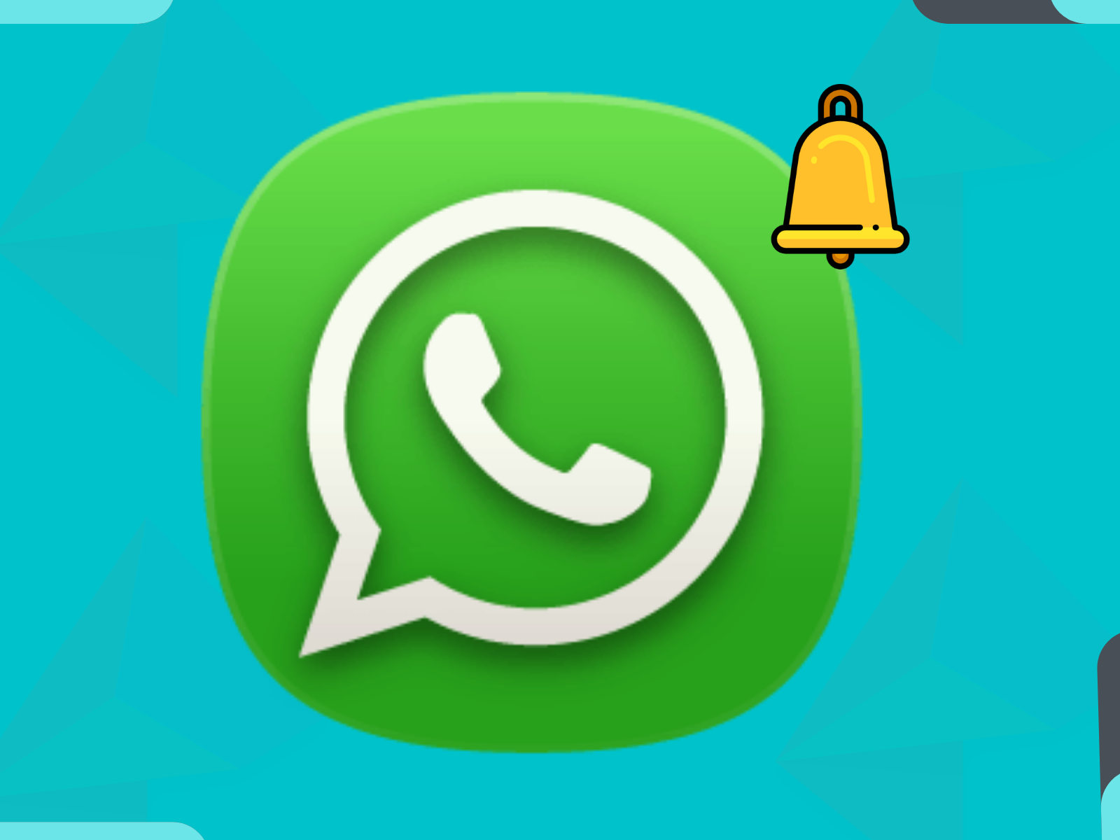 What Everyone Must Know About Magento 2 WhatsApp Order Notification