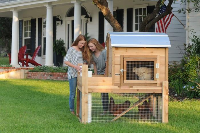 Get the Best Round-Top Backyard™ Chicken Coop