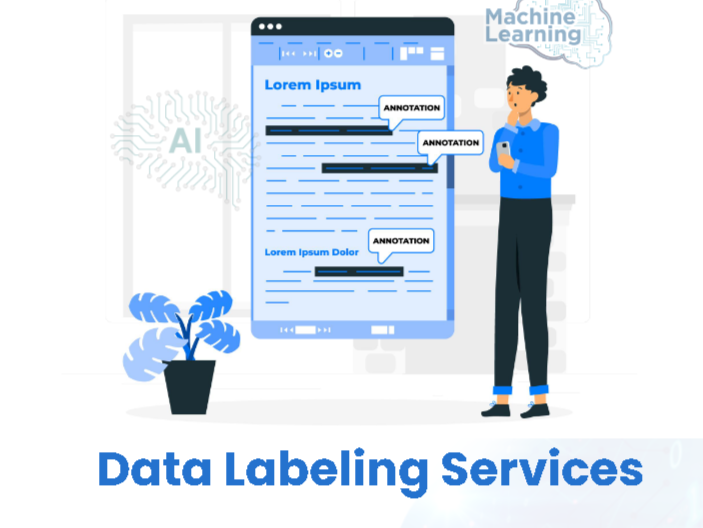 Get Quality Data Labeling Services From Damco at Cost-Effective Rates
