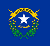 Nevada Business Networking Group Logo