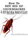 5 ADVICE TO GET RID OF COCKROACH Logo