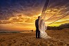 Engagement Photographers in Cabo should Be Hired to Maintain Logo