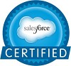 Salesforce Consultants/experts Logo