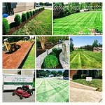 Southern Touch Lawn and Landscaping LLC Icon