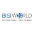 BISI WORLD Icon