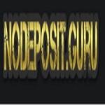 Nodeposit Icon