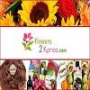 FlowersKorea Icon