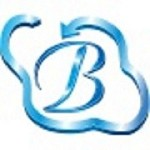 BHAVITRA TECHNOLOGIES PVT LTD Icon