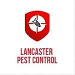 Lancaster Pest Control Icon