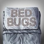 EcoTek Termite and Pest Control Icon